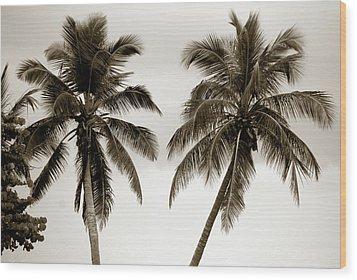 Dancing Palms Wood Print by Susanne Van Hulst