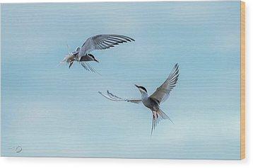 Dancing Terns Wood Print