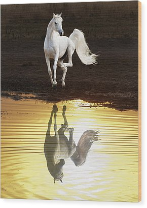 Dancing With Myself Wood Print by Ron  McGinnis