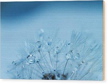 Dandelion Bouquet Wood Print