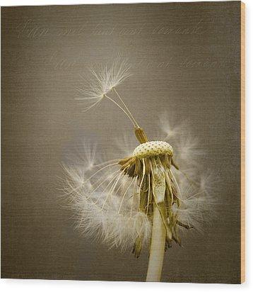 Dandelion Clock Wood Print by Ian Barber