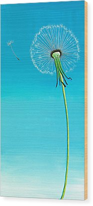 Dandelion Wood Print by David Junod