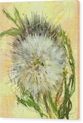 Dandelion Sunshower Wood Print by Desline Vitto