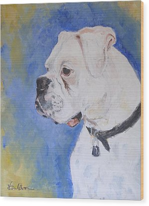Danger The White Boxer Wood Print by Veronica Coulston