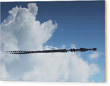 Wood Print featuring the photograph Dangerous Reflection Saltwater Crocodile 2 by Gary Crockett