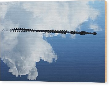 Wood Print featuring the photograph Dangerous Reflection Saltwater Crocodile by Gary Crockett