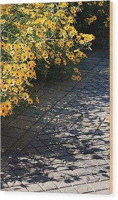 Dappled Light Wood Print by Suzanne Gaff