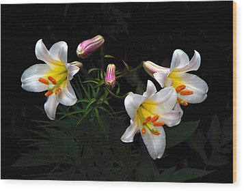 Wood Print featuring the photograph Dark Day Bright Lilies by Byron Varvarigos