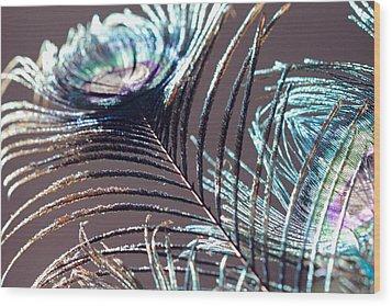 Dark Feathers Wood Print