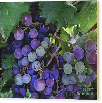 Wood Print featuring the photograph Dark Grapes by Carol Sweetwood