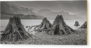 Dark Lake Wood Print