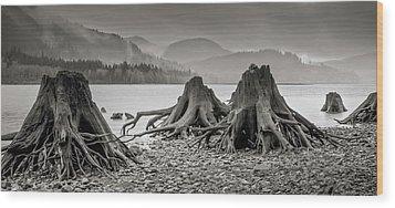 Dark Lake Wood Print by Marius Sipa