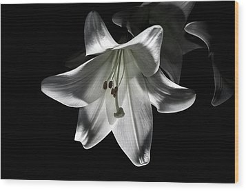 Dark Lilly Wood Print