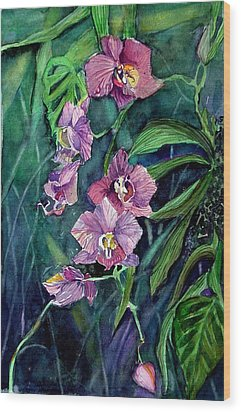 Dark Orchid Wood Print by Mindy Newman