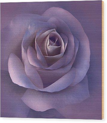 Dark Plum Rose Flower Wood Print by Jennie Marie Schell