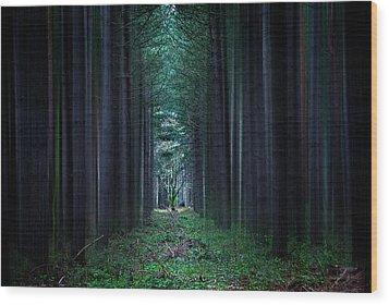 Dark Side Of Forest Wood Print by Svetlana Sewell