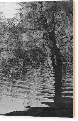 Dark Vision Wood Print by Steven Milner
