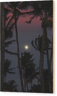 Darkness Wood Print by Raquel Amaral