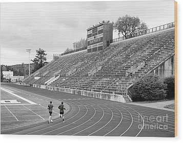 Dartmouth College Memorial Field Wood Print by University Icons