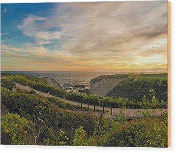Davenport Postcard Sunset Wood Print by Larry Darnell