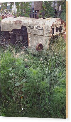 David Brown Grown Wood Print by Jez C Self