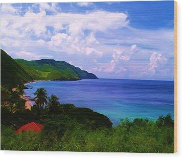 Davis Bay St Croix Us Virgin Islands Painting By Linda Morland