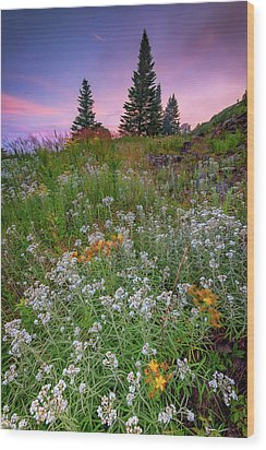 Wood Print featuring the photograph Dawn At Height Of Land by Rick Berk