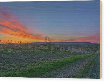 Dawn At Roe Orchards I Wood Print by Angelo Marcialis