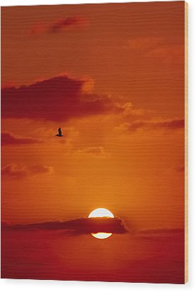 Dawn Flight Wood Print by DigiArt Diaries by Vicky B Fuller