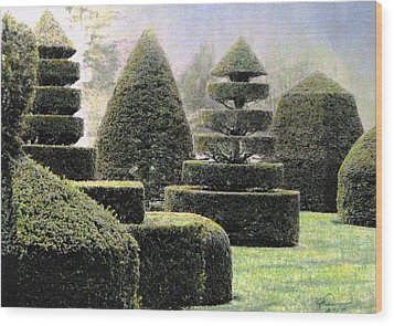 Dawn In A Topiary Garden   Wood Print by Angela Davies
