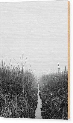 Dawn On Back Bay  Wood Print