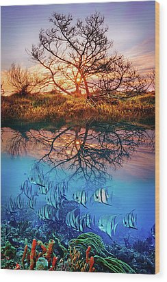Wood Print featuring the photograph Dawn Over The Reef by Debra and Dave Vanderlaan