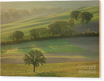 Wood Print featuring the photograph Dawn Over Tuscany II by Brian Jannsen