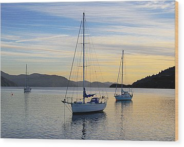 Dawn Picton New Zealand Wood Print by Barry Culling