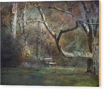 Wood Print featuring the photograph Day Dream by John Rivera