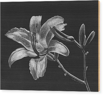Day Lily Wood Print by Diane Cutter