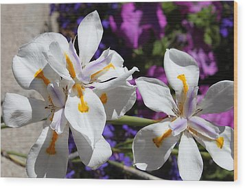 Wood Print featuring the photograph Day Lily by M Diane Bonaparte