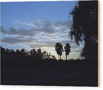 Wood Print featuring the photograph Daybreak In Florida by Frederic Kohli