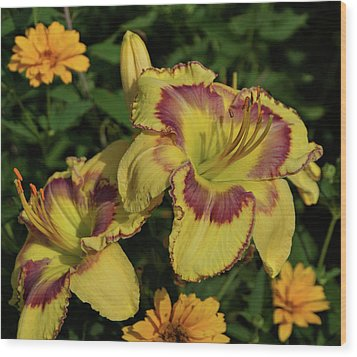 Wood Print featuring the photograph Daylilies And Zinnia by Sandy Keeton