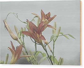 Daylilly Dreaming Wood Print