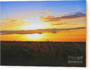 Wood Print featuring the photograph Day's End by DJ Florek