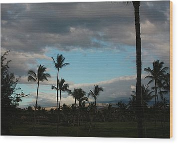 Days End Hawaii Wood Print