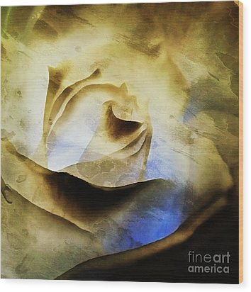 Wood Print featuring the painting Days Go By - Rose - Dreamscape by Janine Riley