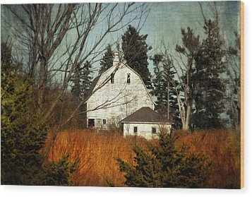 Wood Print featuring the photograph Days Gone By by Julie Hamilton