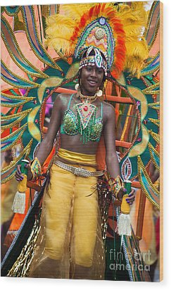 Dc Caribbean Carnival No 16 Wood Print by Irene Abdou