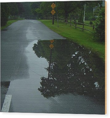 Dead End Puddle Wood Print by Ron Sylvia