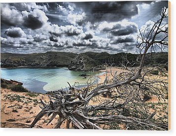Dead Nature Under Stormy Light In Mediterranean Beach Wood Print