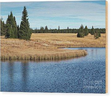 Dead Pond In Ore Mountains Wood Print by Michal Boubin