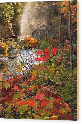 Dead River Falls Foreground Plus Mist 2509 Wood Print by Michael Bessler