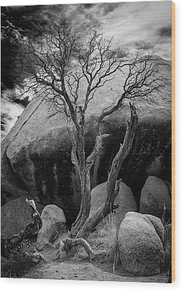 Dead Tree And Boulder At Joshua Tree Wood Print